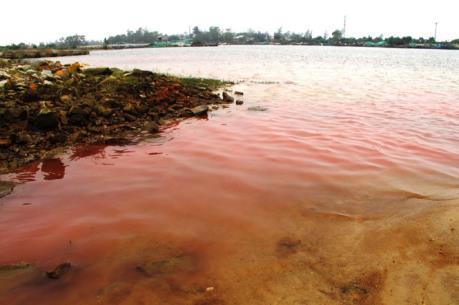 Bộ Tài nguyên và Môi trường kết luận chính thức nguyên nhân các vệt nước biển màu đỏ
