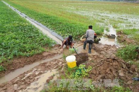 Mùa khô năm 2017: Hạn mặn giảm, mưa trái mùa kéo dài