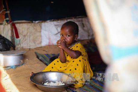20 triệu người ở bốn quốc gia đang có nguy cơ đối mặt với nạn đói nghiêm trọng