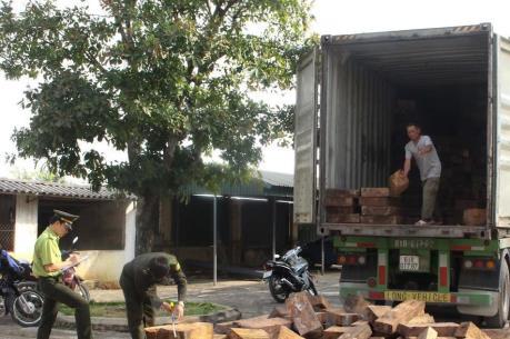 Quảng Ngãi: Bắt giữ xe chở 20 tấn gỗ không rõ nguồn gốc