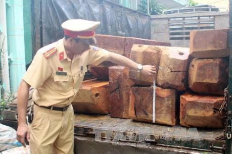 Quảng Bình: Bắt giữ lái xe chở gỗ lậu manh động
