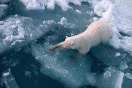 Trung Quốc công bố Sách Trắng về Bắc Cực