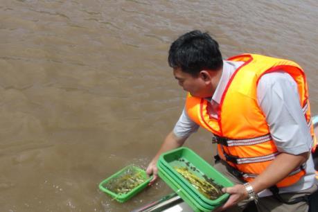 Trà Vinh thả 1,4 triệu con giống thủy sản ra môi trường tự nhiên
