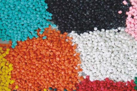 """Phát hiện loại nấm có khả năng """"tiêu hóa"""" nhựa dẻo"""