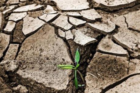 Biến đổi khí hậu: Các nước cam kết mạnh mẽ bảo vệ Trái Đất