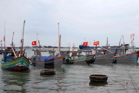 Hà Tĩnh: Đời sống nhân dân từng bước ổn định sau một năm sự cố môi trường biển