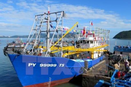 Nhiều chủ tàu kinh doanh có lãi nhờ Nghị đinh 67