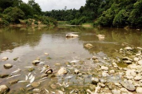 Thanh Hóa đình chỉ hoạt động của công ty xả nước thải chưa xử lý ra sông Âm