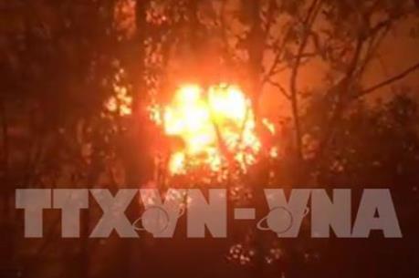 Cháy lớn thiêu rụi gần 30 ha rừng tràm tại An Giang