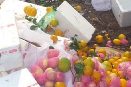 Bình Phước tiêu hủy gần một tấn trái cây nhập lậu