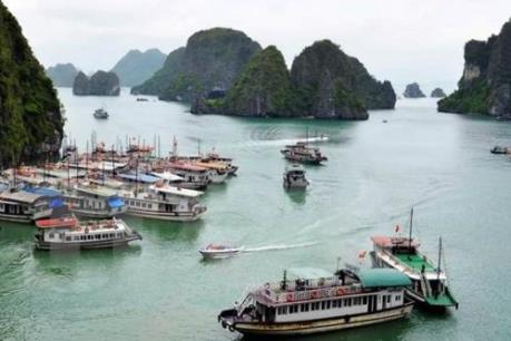 Quảng Ninh đình chỉ hoạt động tàu du lịch bán giá cao các dịch vụ