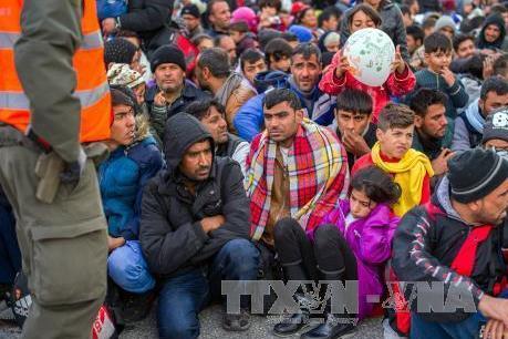 EU giảm tiếp nhận người tị nạn