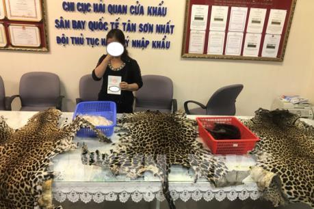 Hải quan Tân Sơn Nhất phát hiện vụ nhập lậu sản phẩm động vật hoang dã quý hiếm