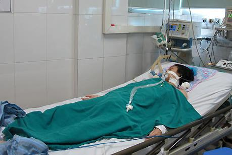 Kon Tum: Phát hiện trường hợp viêm não Nhật Bản