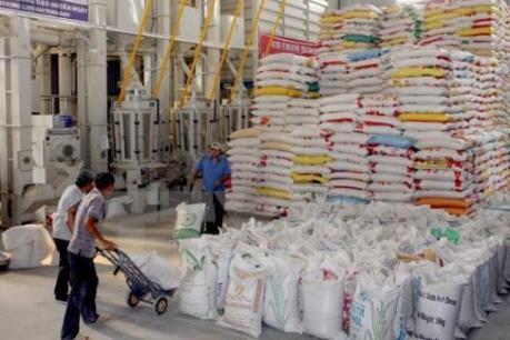 Giá gạo hồi phục mạnh ở cả thị trường nội địa lẫn xuất khẩu