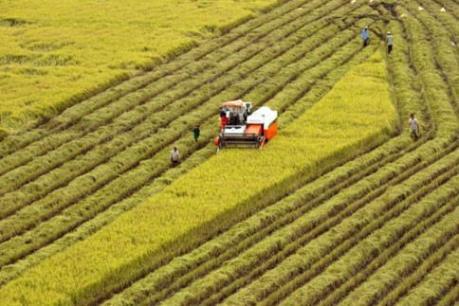 Tích tụ ruộng đất: Đi tìm phương thức ưu việt - Bài 2: Bứt phá từ tích tụ