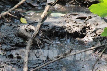 Đồng Nai không gia hạn di dời cơ sở gây ô nhiễm môi trường