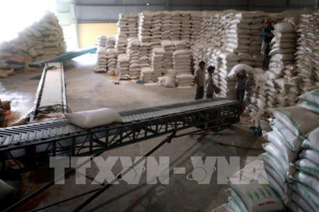 """Xuất khẩu gạo: Doanh nghiệp nhỏ mong chờ được """"cởi trói"""""""