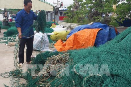 Nhiều ngư dân thiệt hại nặng vì tàu giã cào