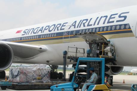 Dịch vụ hàng hóa, dịch vụ mặt đất của Vietnam Airlines nhận giải thưởng quốc tế