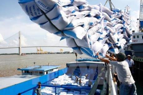 Xuất khẩu gạo tăng nhờ bán giá thấp?