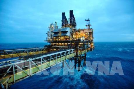 Giá dầu thế giới tăng bảy phiên liên tiếp