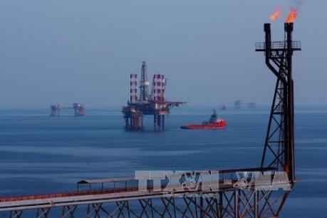 Khai thác thêm 1 triệu tấn dầu: Khó nhưng vẫn có thể hoàn thành