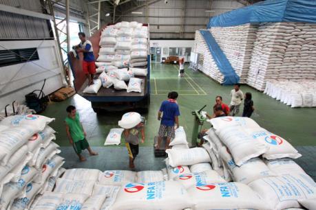 Doanh nghiệp có dễ tiếp cận gói thầu 250.000 tấn gạo cho Philippines?