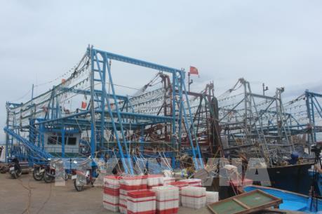Thanh Hóa kiến nghị khoanh nợ cho chủ tàu cá đóng theo Nghị định 67 bị hư hỏng