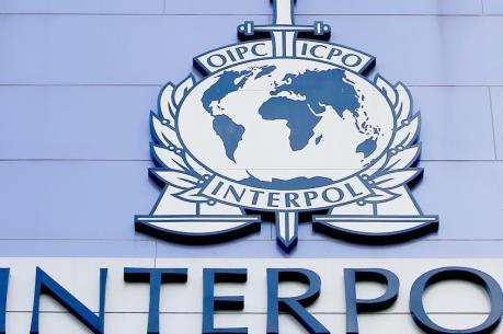 Interpol truy bắt hàng trăm phần tử thánh chiến được huấn luyện tấn công châu Âu