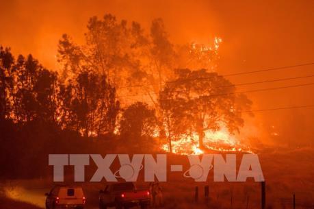 PG&E đề xuất bồi thường 13,5 tỉ USD cho nạn nhân vụ cháy rừng tại California