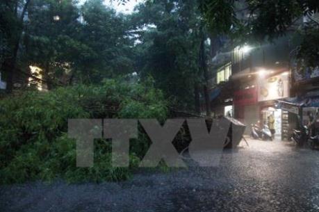 Dự báo thời tiết: Áp thấp nhiệt đới gây mưa ở Tây Nguyên