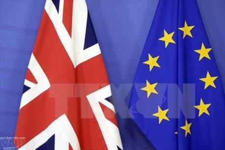 """Kinh tế Anh có thể được lợi nhờ Brexit """"cứng"""""""