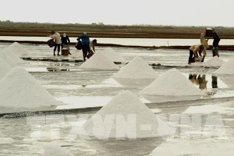 """Tại sao đất nước """"vạn đảo"""" Indonesia vẫn phải nhập khẩu muối?"""