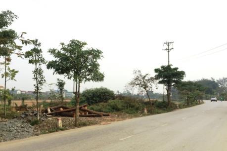 Phó Thủ tướng yêu cầu giải quyết khiếu nại đất đai tại huyện Thạch Thất, Hà Nội