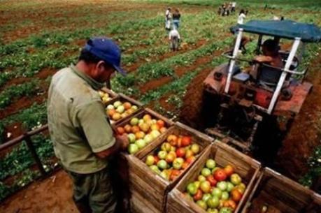 Mở cửa lĩnh vực tư nhân, Cuba có hơn 400 hợp tác xã tư nhân
