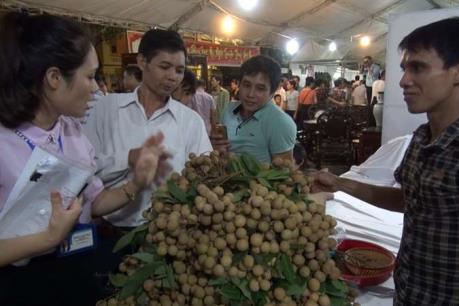 Lễ hội nhãn lồng Hưng Yên gây thất vọng