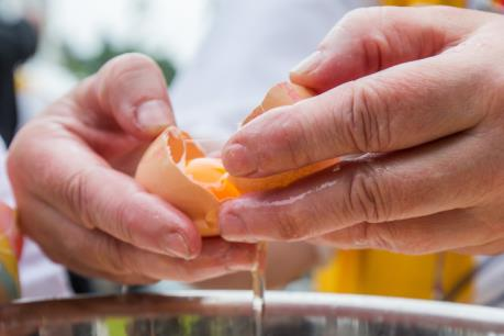 """Tiết lộ mới nhất về quy mô bê bối trứng """"bẩn"""" tại châu Âu"""
