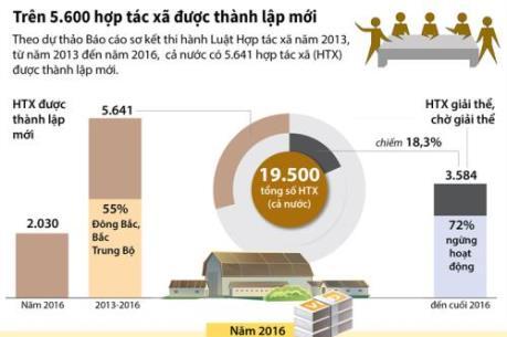 Trên 5.600 hợp tác xã được thành lập mới
