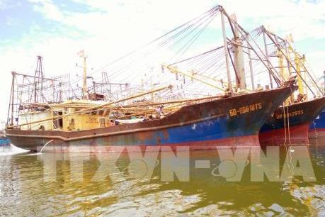 Có tới 9/10 mẫu thép của các tàu cá Bình Định kiểm định thêm không đạt chuẩn