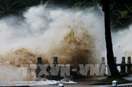 Bão số 10 mạnh lên, đạt sức gió 150 km/giờ trước khi đổ bộ vào Nghệ An đến Quảng Trị