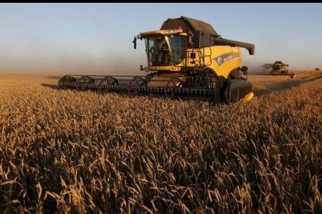Nga: Quá tải trong dự trữ ngũ cốc