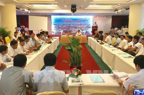 Làm gì để tái tạo nguồn lợi thủy sản ở 4 tỉnh miền Trung?