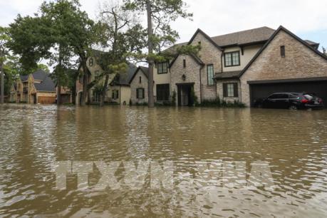 Nhà Trắng hối thúc công tác hỗ trợ tái thiết sau bão Harvey