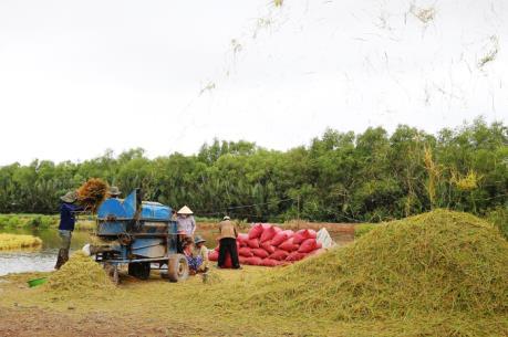Cần Thơ hợp tác với Australia tăng cường năng lực xuất khẩu gạo