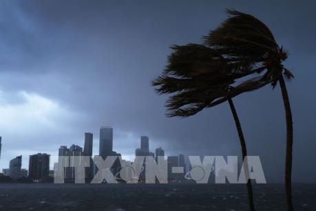 Siêu bão Irma tiến vào bang Florida của Mỹ