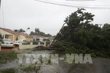 """Kinh tế Mỹ """"gặp hạn"""" vì Harvey và Irma"""