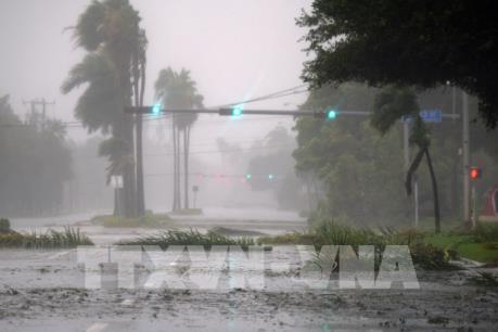 Harvey và Irma, những cơn bão gây thiệt hại nặng nề nhất cho nước Mỹ