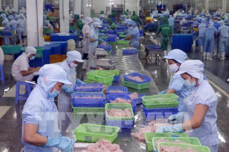 Kết luận sơ bộ đợt rà soát hành chính thuế chống bán phá giá đối với cá tra Việt Nam