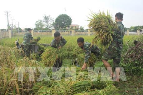 Dự báo thời tiết ngày 15/9, bão số 10 đổ bộ vào Nghệ An - Quảng Trị, gió giật cấp 15